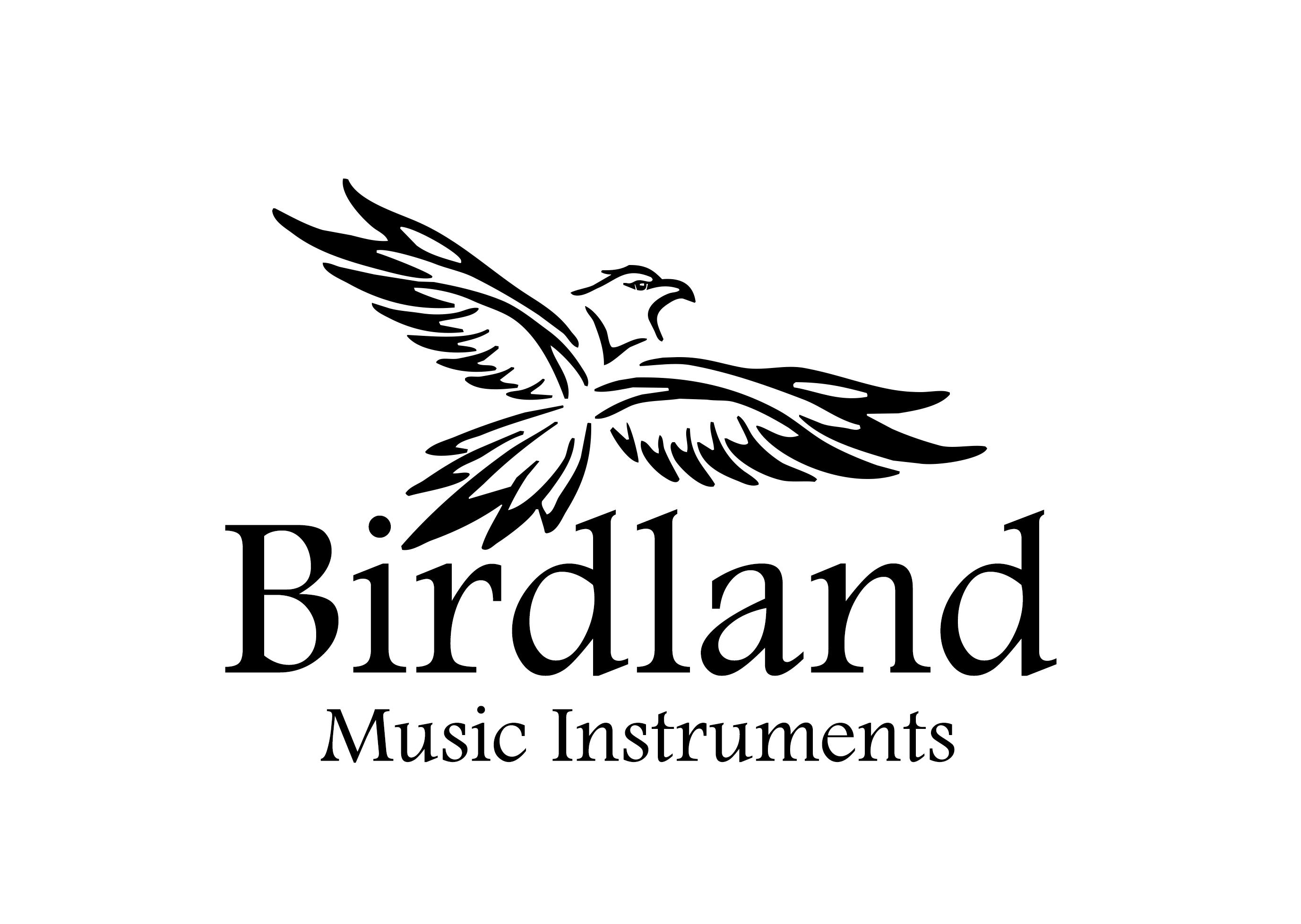 Магазин музыкальных инструментов.